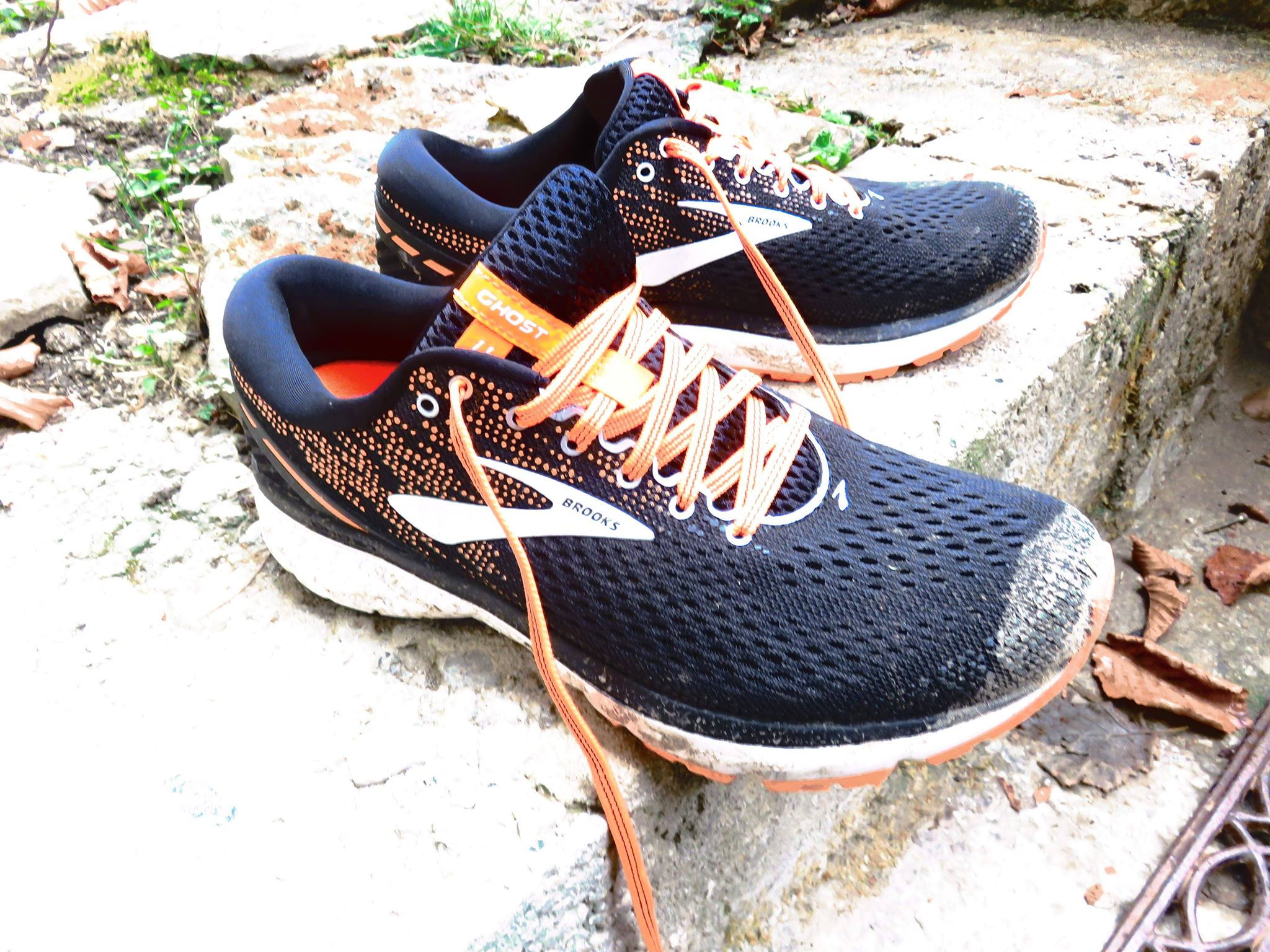 63f00f0bb01 TEST CHAUSSURES – Brooks Ghost 11